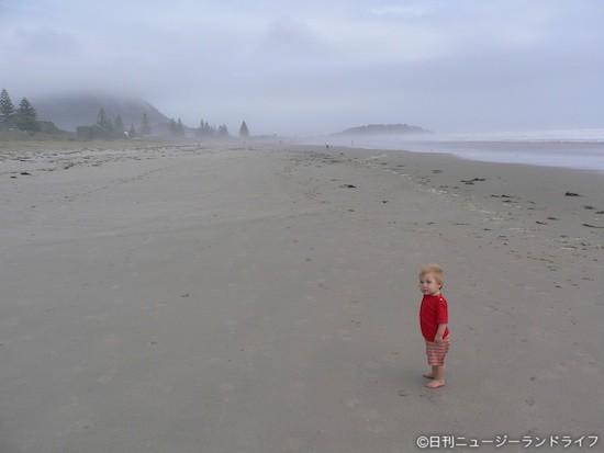ニュージーの浜辺で拾った石に$65,000の価値