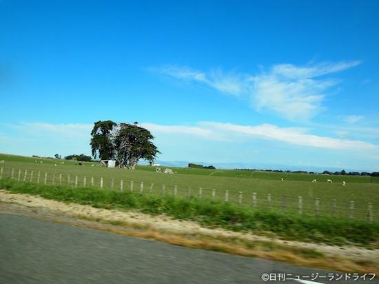 Wellington – Taupo間400kmを一気に北上