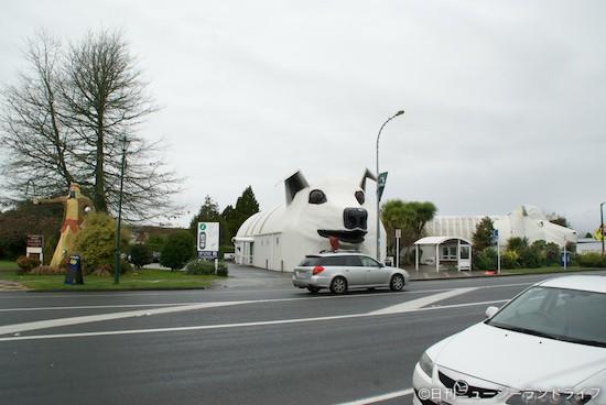 嵐に直撃!ニュージーランドの観光は天候がすべて