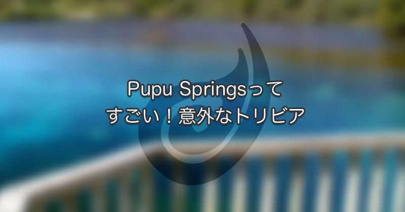 Pupu Springsってすごい!意外なトリビア