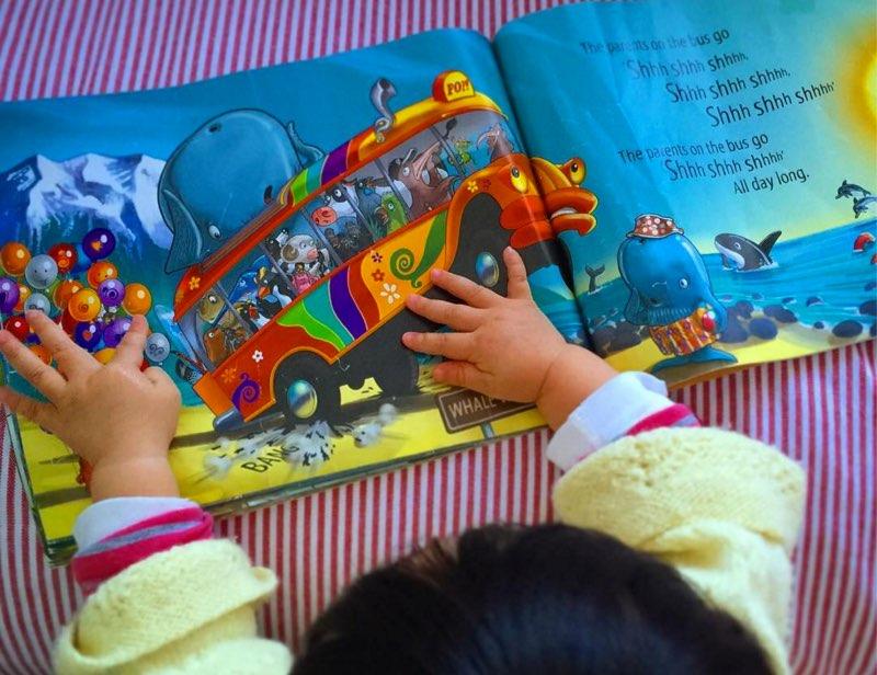 大人が見ても楽しい!子どものお土産にピッタリ!なニュージーランド絵本