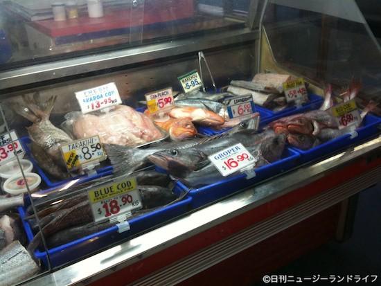 魚の名前:英語・マオリ語・日本語