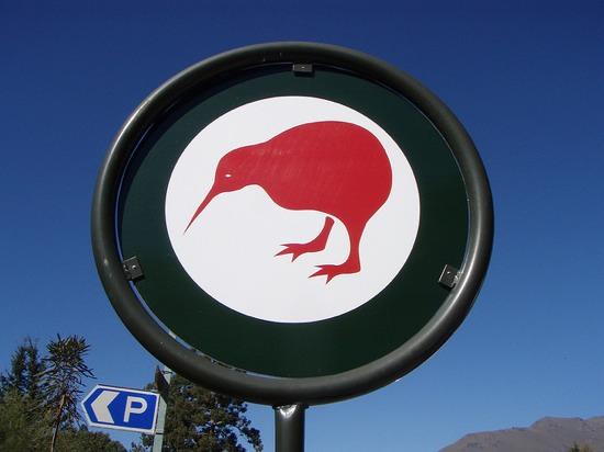 ニュージーランドの国鳥「キウイ」のトリビア