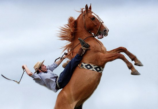 英皇太子に馬ふんをぶっかけようとしたNZ人逮捕
