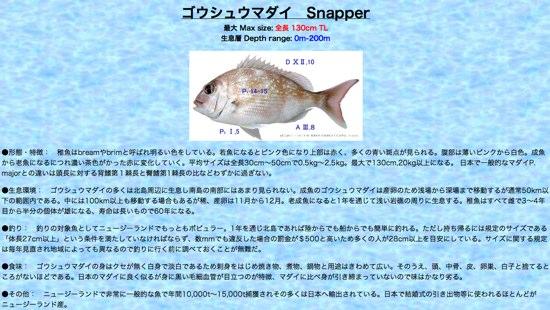 NZの魚230種類を紹介する「Web NZ Fish Guide」